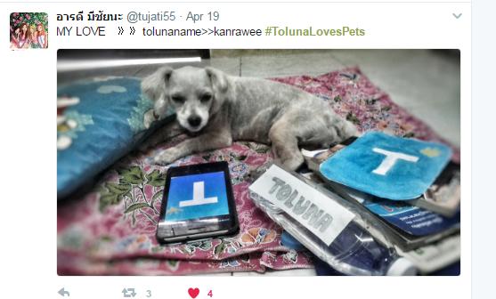 TolunaLovesPets TW Winner